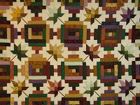Bright Court Step Autumn Splendor Quilt