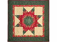 Sage Green and Red Lone Star Wall Hanging