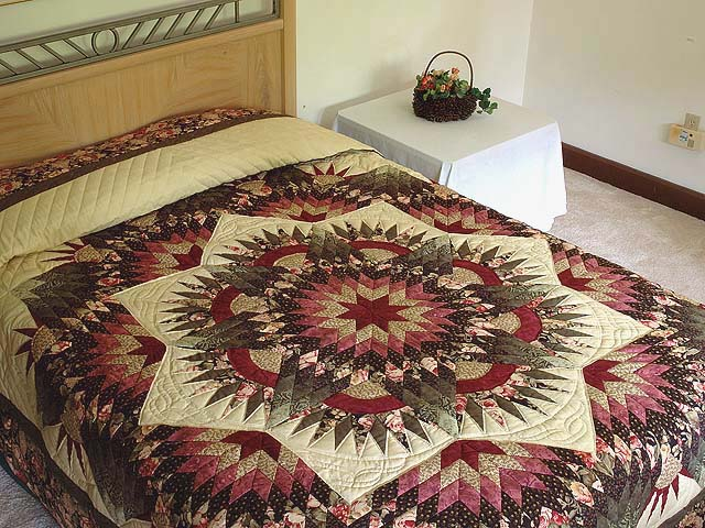 Rose Green and Beige Compass Star Quilt Photo 1