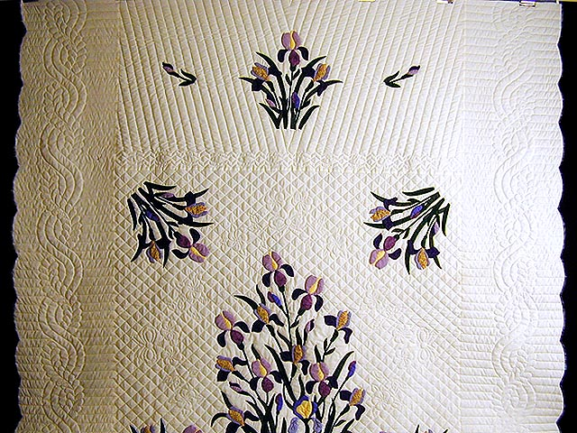 Purple and Yellow Iris Applique Quilt Photo 2