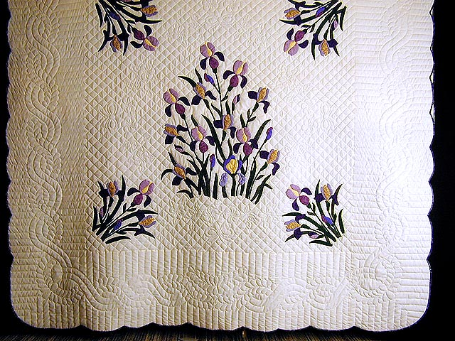 Purple and Yellow Iris Applique Quilt Photo 3