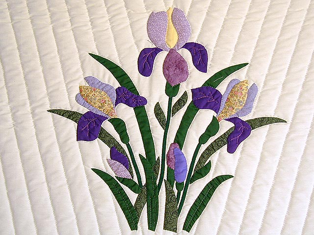 Purple and Yellow Iris Applique Quilt Photo 4