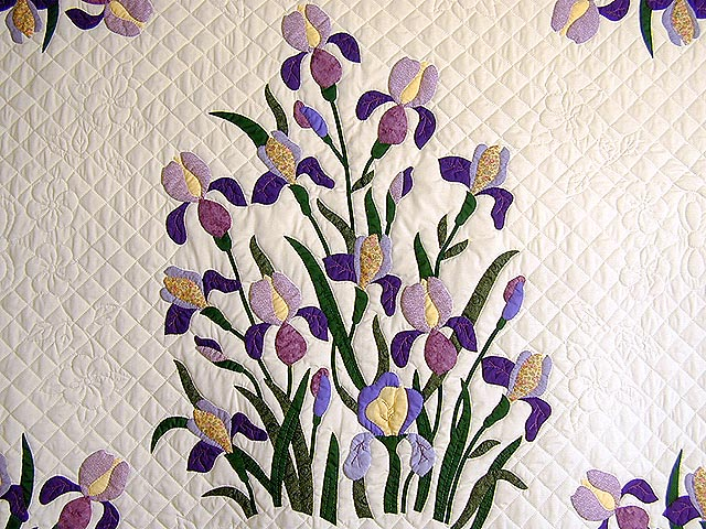 Purple and Yellow Iris Applique Quilt Photo 5