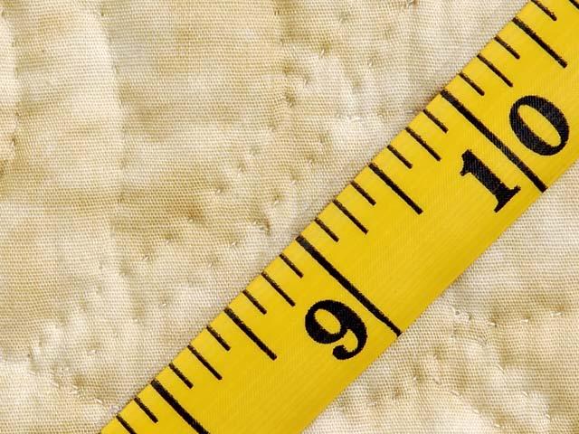 Plum Tones on Sand Petal Showcase Quilt Photo 8