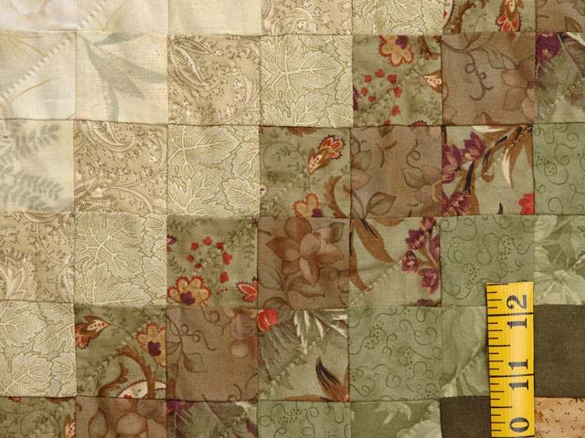 Green Paprika and Sage Color Splash Quilt Photo 6