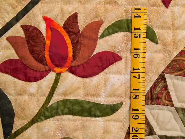 Prairie Star Appliqué Quilt Photo 6