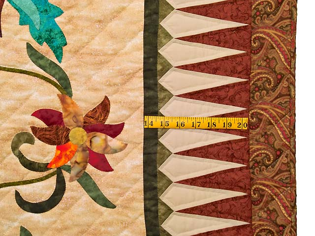 Prairie Star Appliqué Quilt Photo 7