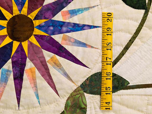 Extraordinary Compass Gardens Applique Quilt Photo 5
