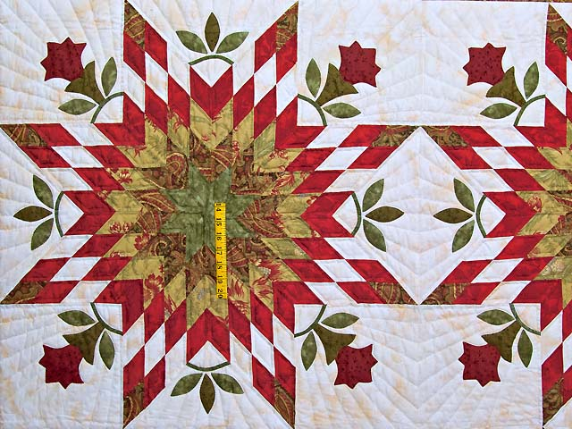 King Sage and Red Starburst Quilt Photo 4