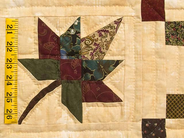 Earthtones Autumn Wind Quilt Photo 5