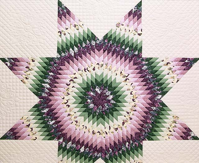 Lavender and Green Lone Star Country Bride Quilt Photo 3