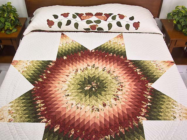 Rose and Green Lone Star Country Bride Quilt Photo 1