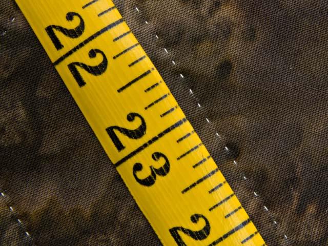 Katie Compass Star Quilt Photo 8