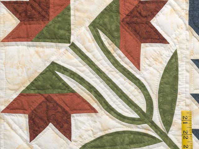 King Green Navy and Golden Tan Blooming Star Quilt Photo 5