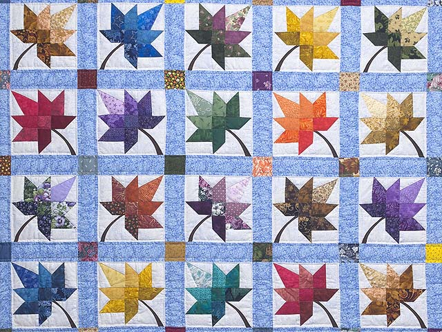Bright Autumn Splendor Quilt Photo 3