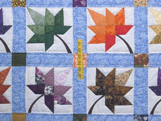 Bright  Autumn Splendor Quilt Photo 4