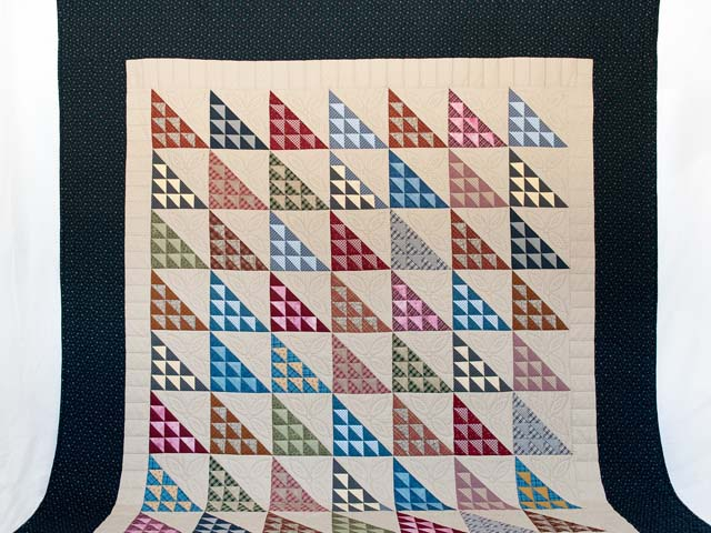 Navy and Multicolor Birds in the Air Quilt Photo 2