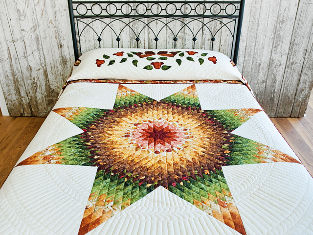 Autumn Lone Star Quilt Photo 1