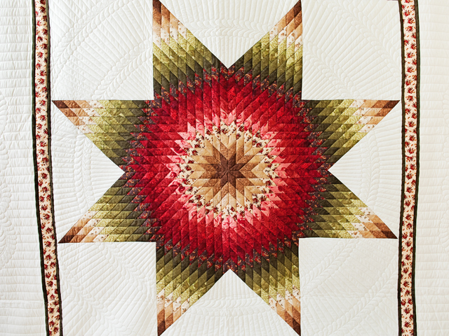 Brown, Red and Green Lone Star Quilt Photo 3