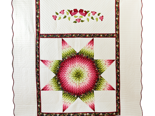 Red and Green Lone Star Quilt Photo 2