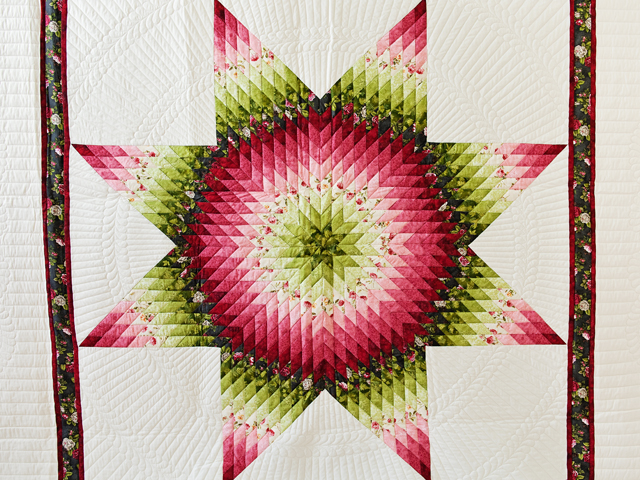 Red and Green Lone Star Quilt Photo 3