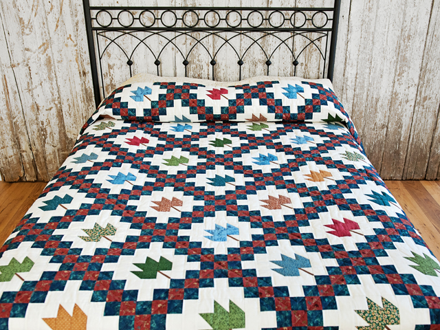 Multi Colored Autumn Splendor Quilt Photo 1