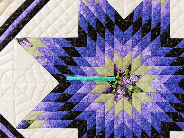 Purple and Green Lone Star Trip Quilt Photo 5
