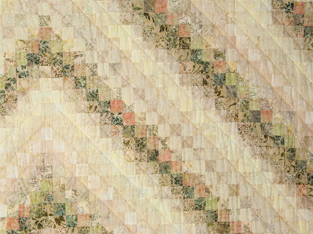Colorsplash - 