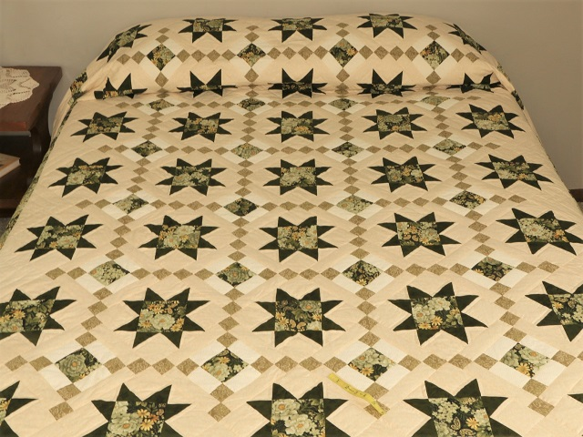 Green Cross Country Quilt Photo 1