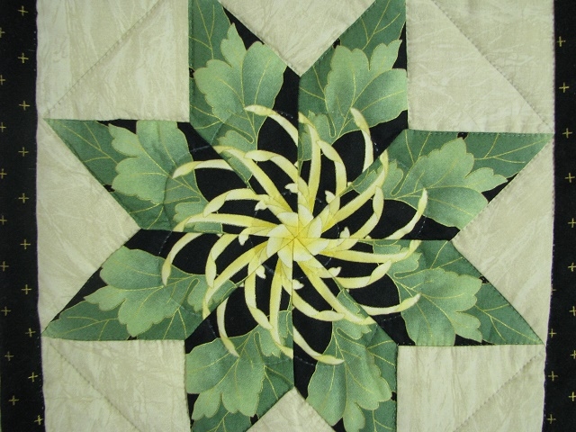 Black and Green Stack and Whack Stars Quilt Photo 6