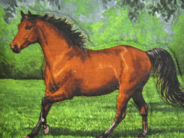 Chestnut Brown Horse Star Quilt Photo 5
