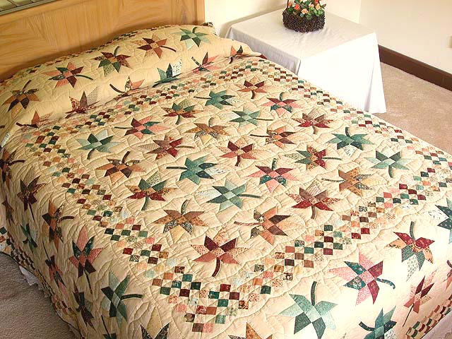 Autumn Splendor in Commons Quilt Photo 1