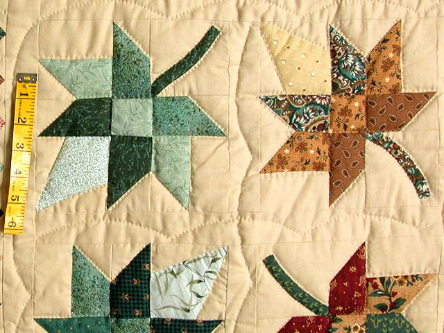 Autumn Splendor in Commons Quilt Photo 5