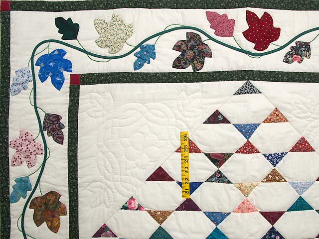 Indian Summer Throw Photo 3