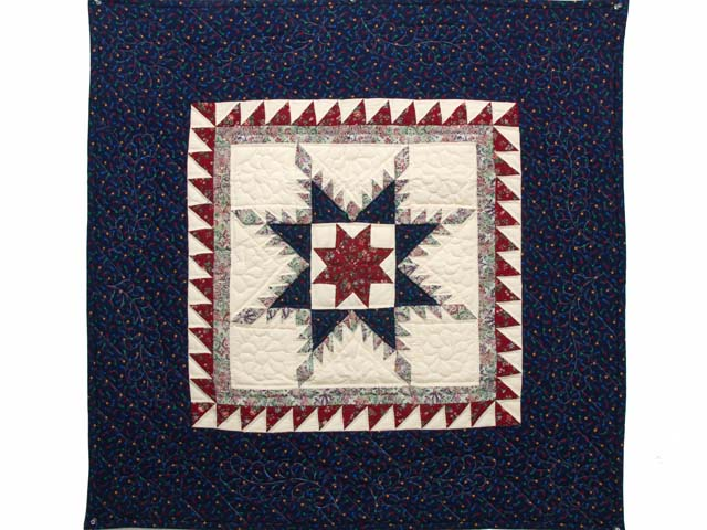 Navy and Burgundy Feathered Star Wall Hanging Photo 1