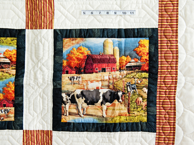 Country Farm Scene Quilt Photo 3