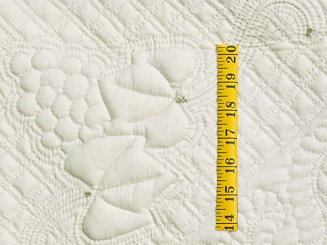All Quilted Trapunto Grapes Divine Quilt Photo 4