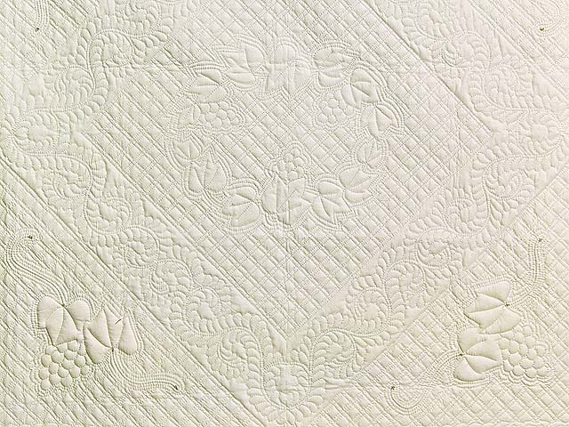 All Quilted Trapunto Grapes Divine Quilt Photo 2