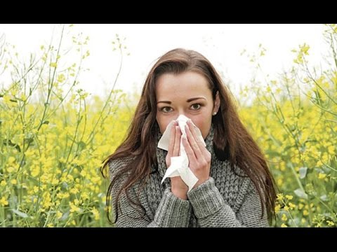 Fall Allergies Got You Down?