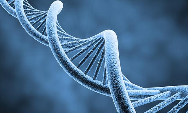 afd_genetictesting648x390
