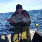 west coast Snapper 6/0 Recurves