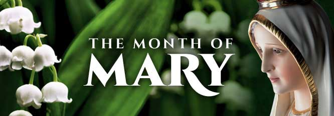 Image result for may the month of mary