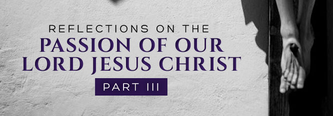 Reflections on the Passion of Our Lord Jesus Christ Part 3