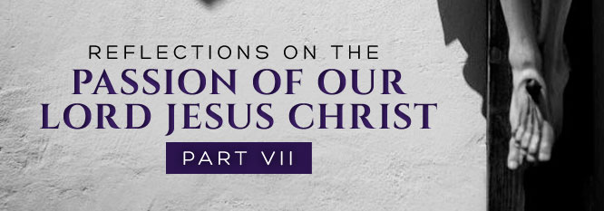 Reflections on the Passion of Our Lord Jesus Christ Part 7