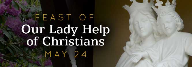 Header-Our Lady Help of Christians