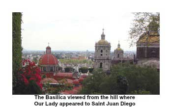 View from hill of the Basilica