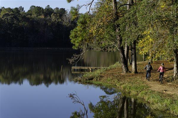 Biking for Beginners in Auburn-Opelika