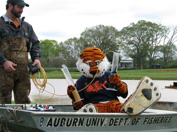 AU Fisheries to hold Field Day event on April 6