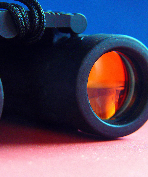 Top 5 Deer Hunting Binoculars That Give Good Value For Money