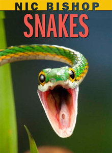 Weevils and worms and snakes, oh my!